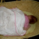 in basket